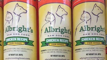 Dog food recalled over salmonella concerns, FDA says