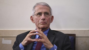 NY Times claims Fauci has 'commitment to hard facts' after he admitted to paper he lied about herd immunity