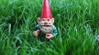 Billionaire sends gnome to space for New Zealand charity, thanks country for hospitality during pandemic
