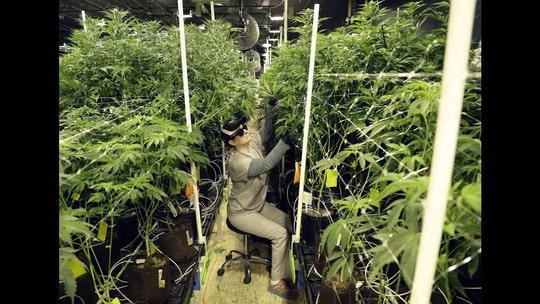 NJ cannabis bill advances, but lawmakers differ on details