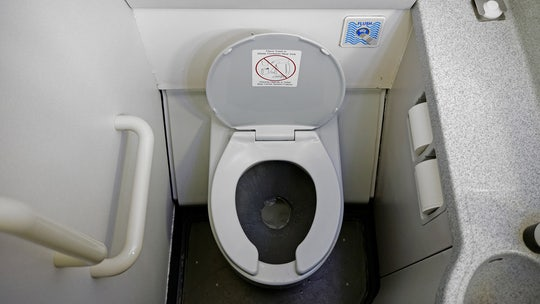 TikTok user 'grills' steak in airplane bathroom, draws criticism from viewers and airlines alike: 'Disgusted'