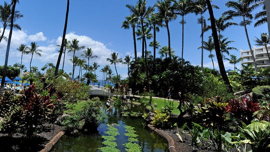 Lawmakers' Hawaii conference backlash brutal as California's coronavirus restrictions tighten