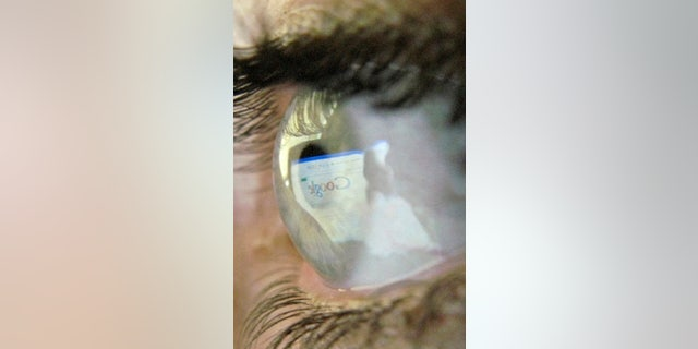A Google search page is reflected in the eye of a computer user in Leicester, central England, July 20, 2007.