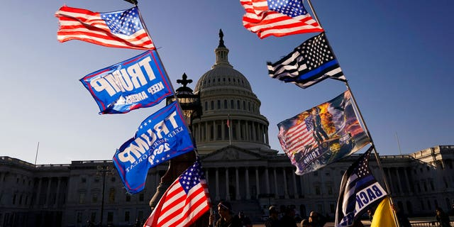 With the U.S. Capitol in the background, flags fly as supporters of President Trump attend pro-Trump marches, Saturday Nov. 14, 2020, in Washington. (AP Photo/Jacquelyn Martin)