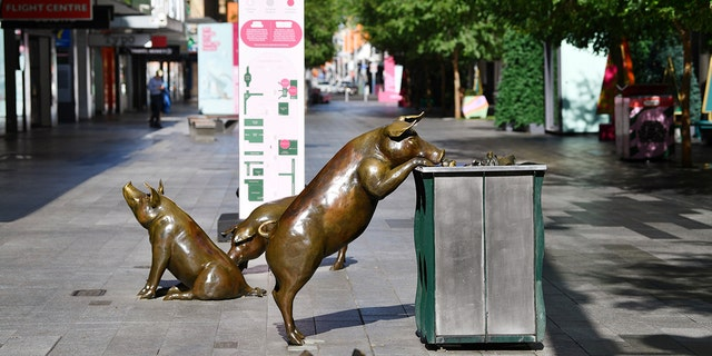 Sculptures of pigs are shown in an almost empty pedestrian mall in Adelaide, Australia, Thursday, November 19, 2020 (David Marius / AAP Image via AP)