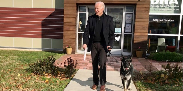 President Biden's two German Shepherds were removed from the White House after one of them allegedly bit a member of the White House security staff.  (Stephanie Carter / Delaware Humane Association via AP)