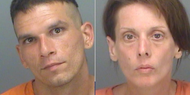 (Pinellas County Sheriff's Office)