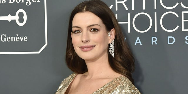 Anne Hathaway said she no longer wants to be called Anne Hathaway. (Photo by David Crotty/Patrick McMullan via Getty Images)