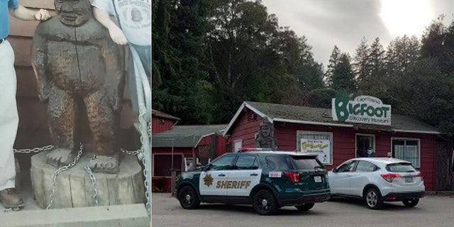 A Bigfoot statue was stolen sometime on Monday from the Bigfoot Discovery Museum in Felton, 牛犊.