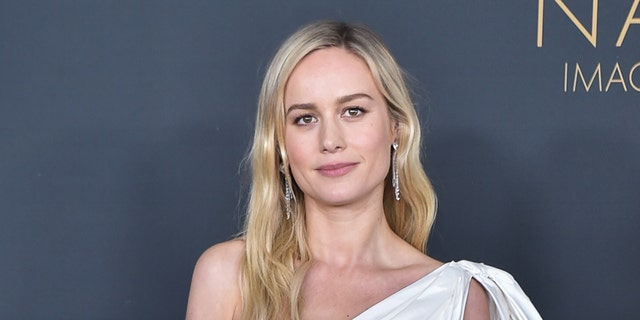 Brie Larson said that while voting may be somewhat of a complicated process, it's important. (Aaron J. Thornton/FilmMagic)
