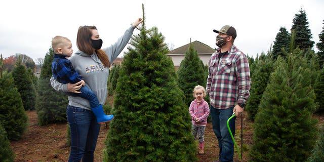 Josh and Jessica Ferrara shop for Christmas trees with son Jayce, 1 year and Jade, 3 年份, at Sunnyview Christmas Tree farm in Salem, 矿石. (AP Photo/Paula Bronstein)