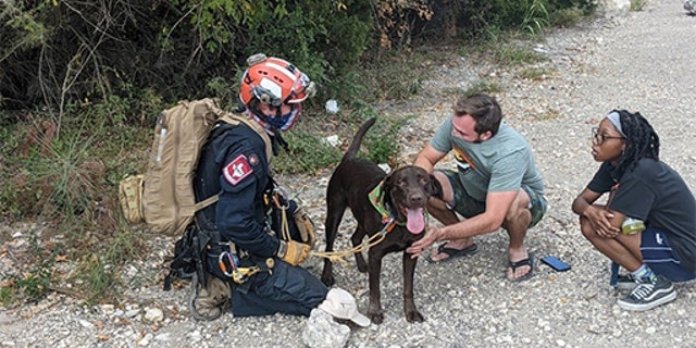 Paramedic Bob Luddy rescued Stout after the dog fell off a 70-foot cliff in Austin Texas.