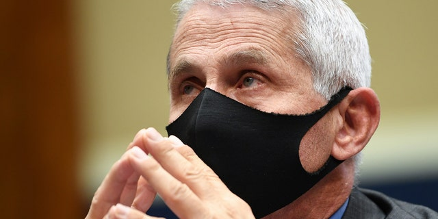 Dr. Fauci on Thanksgiving gatherings: 'keep the mask on'