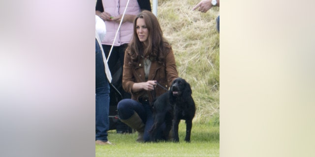 Catherine, Duchess of Cambridge, and Lupo at a polo match in 2012.