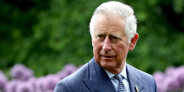 Prince Harry revealed that at one point, Prince Charles (pictured) had stopped taking his phone calls.