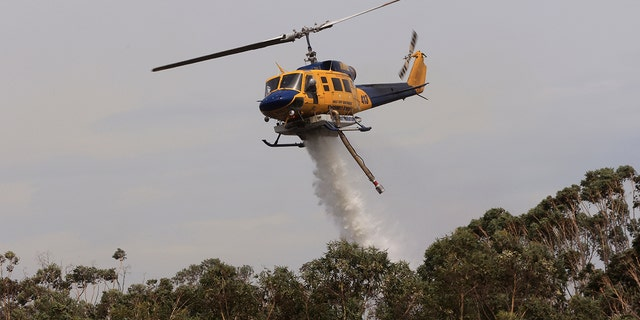 SYDNEY, AUSTRALIA - NOVEMBER 29: Helicopters are seen water bombing an out of control bushfire at Northmead on November 29, 2020 in Sydney, Australia. The Bureau of Meteorology has forecast heatwave conditions in NSW this weekend, with temperatures expected to exceed 40 degrees across the state. (Photo by Jenny Evans/Getty Images)