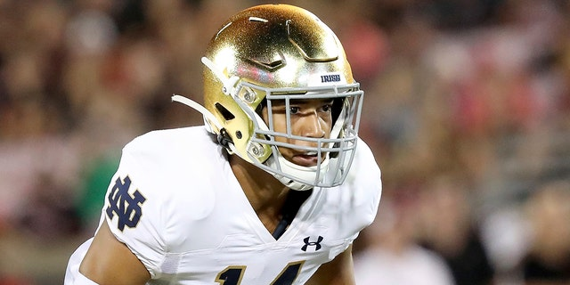 Notre Dame defensive back Kyle Hamilton during an NCAA football game on Monday, Sett. 2, 2019, in Louisville, Ky. (AP Photo/Tony Tribble)