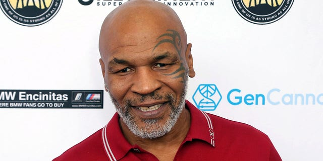 Mike Tyson has slammed Hulu's upcoming biopic series, calling it a 'cultural misappropriation' of his story. (Photo by Willy Sanjuan/Invision/AP, File)