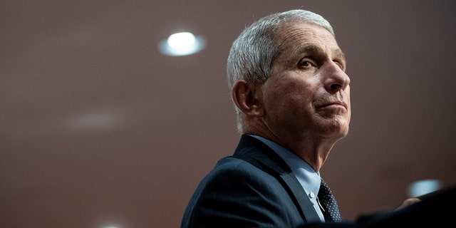 Dr. Anthony Fauci, director of the National Institute of Allergy and Infectious Diseases, in Washington, D.C., June 30, 2020.