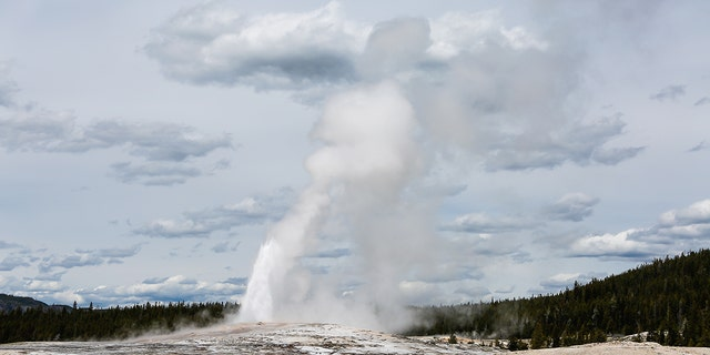 A man was banned from Yellowstone National Park after he admitted to cooking chickens in a thermal geyser. (iStock)