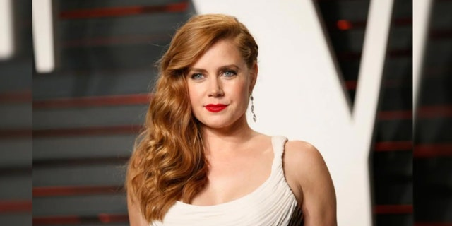 "Amy Adams confirmed she's not offended by the harsh criticism of her new film, ""Hillbilly Elegy."" The movie is currently streaming on Netflix."