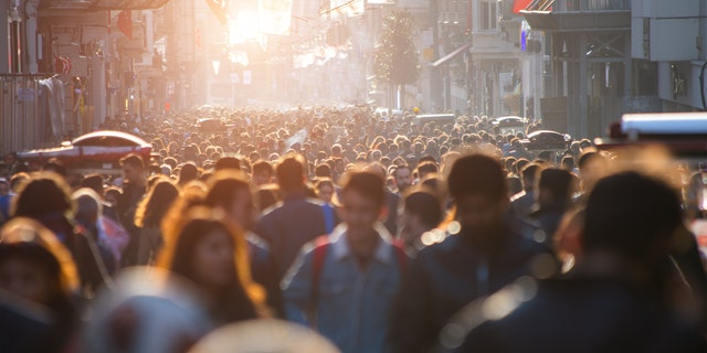 To date, Sweden has recorded more than 230,000 virus cases and roughly 6,500 deaths from the disease, according to estimates from Johns Hopkins University. (iStock)