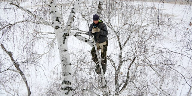 OMSK REGION, RUSSIA NOVEMBER 14, 2020: Student Alexei Dudoladov climbs a birch tree 300m away from his village of Stankevichi in order to pick up an internet signal. (Photo by Yevgeny SofiychukTASS via Getty Images)