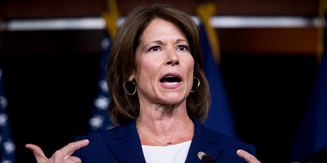 Rep. Cheri Bustos, D-Ill., seen here in 2017, announced she won't seek re-election.