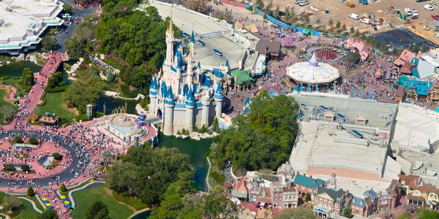 According to witnesses, Arvid allegedly tackled a security guard from behind near the DinoLand USA area of Disney World.