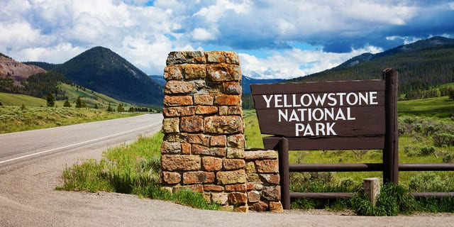 Yellowstone, Grand Teton National Parks Resume Large Group Tours After Shutting Down Operations