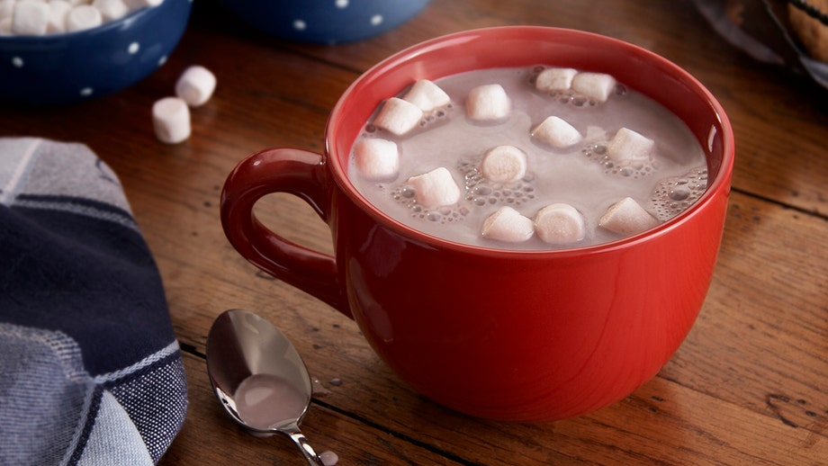 Flavanols in hot chocolate boost brain power, improve cognitive ability, small study suggests