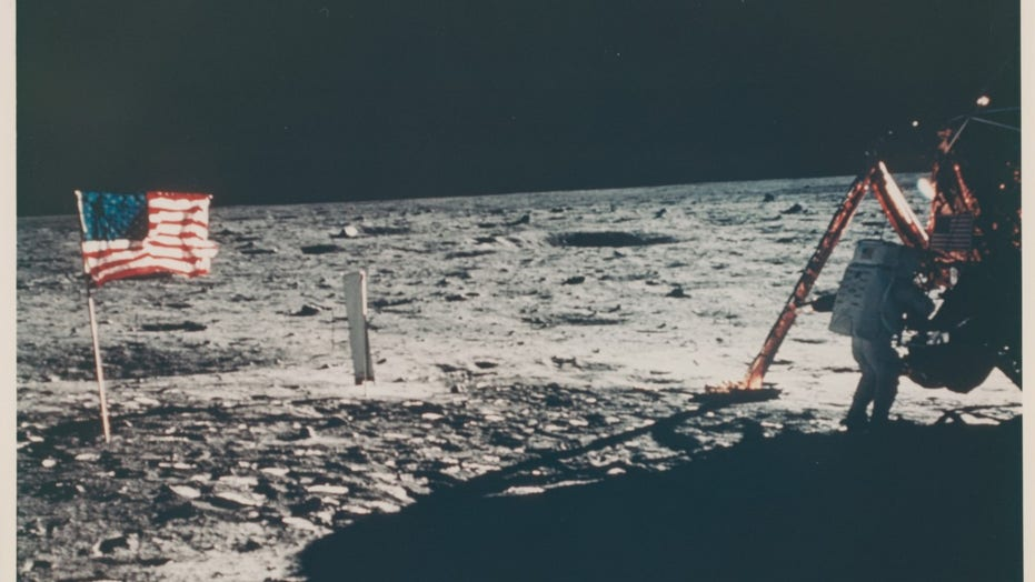 Apollo 11: Only picture of Neil Armstrong on the moon up for auction
