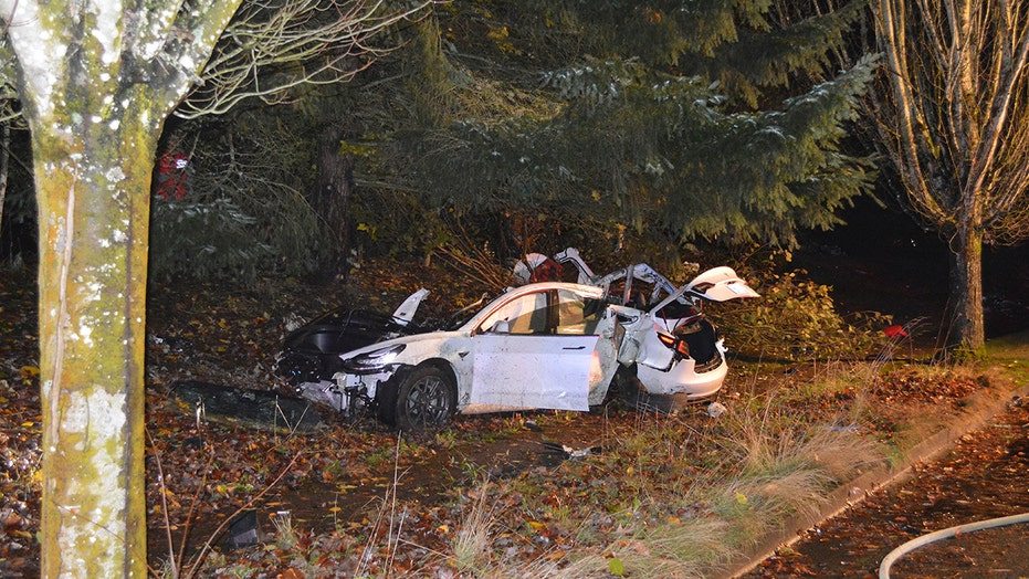 Oregon Tesla crash sends battery cells flying into homes