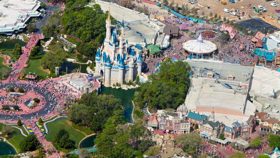Disney World guest filled with 'excited delirium' arrested for attacking security guard at Animal Kingdom