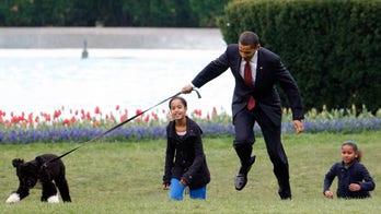 Obama family dog Bo dies