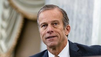 Senate's No. 2 Republican, John Thune, to face primary challenge