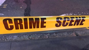 Florida man fatally shoots friend after being menaced with pitchfork: deputies