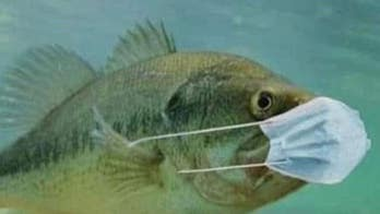 Pennsylvania asks fishermen to stop tossing masks in water