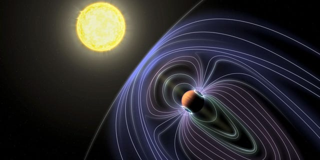 In this artistic rendering of the Tau Boötes b system, the lines representing the invisible magnetic field are shown protecting the hot Jupiter planet from solar wind. (Jack Madden/Cornell University)