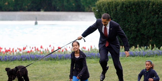 In this April 14, 2009, file photo President Barack Obama is almost jerked off his feet as he shows off their new dog Bo, a 6-month-old Portuguese water dog with his daughters Malia, 왼쪽, and Sasha Obama, 권리, on the South Lawn of the White House in Washington.  (AP Photo/Ron Edmonds, 파일)