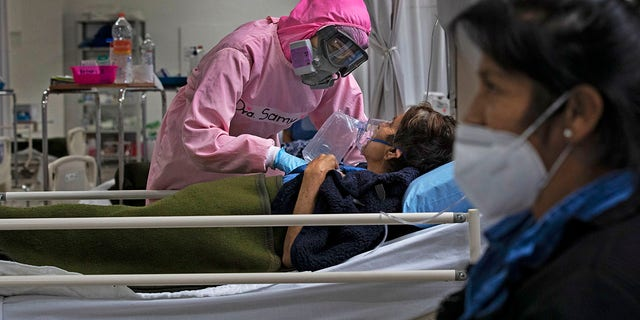 A health worker looks after patients at a military hospital set up for COVID-19 patients in Mexico City, 월요일, 11 월. 30, 2020. (AP Photo/Marco Ugarte)