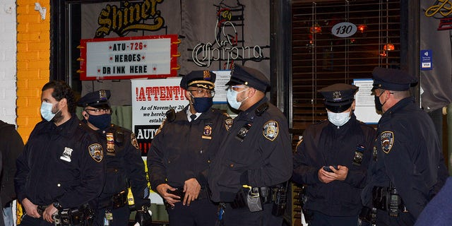 NYC 'Autonomous Zone' bar owner arrested after hitting sheriff's deputy with auto