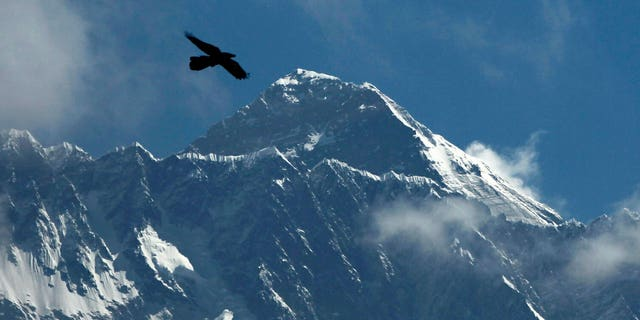A bird flies with Mount Everest seen in the background from Namche Bajar, Solukhumbu district, Nepal. (AP Photo/Niranjan Shrestha)