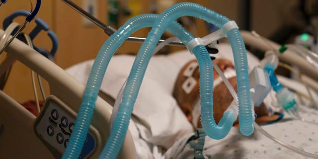 Nov. 19, 2020: Ventilator tubes are attached to a COVID-19 patient at Providence Holy Cross Medical Center in the Mission Hills section of Los Angeles.