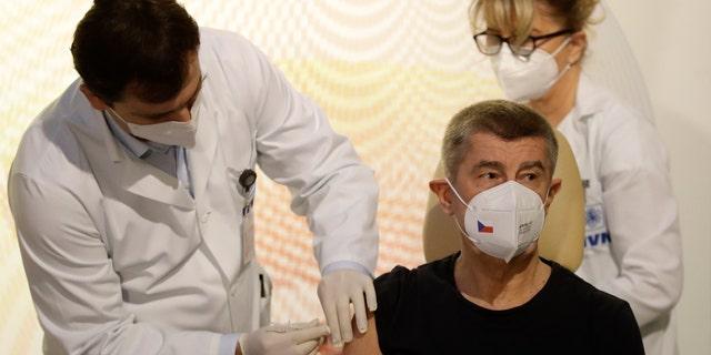 Czech Republic's Prime Minister Andrej Babis receives vaccine against COVID-19 at the military hospital in Prague, Czech Republic, Sunday, Dec. 27, 2020. (AP Photo/Petr David Josek)