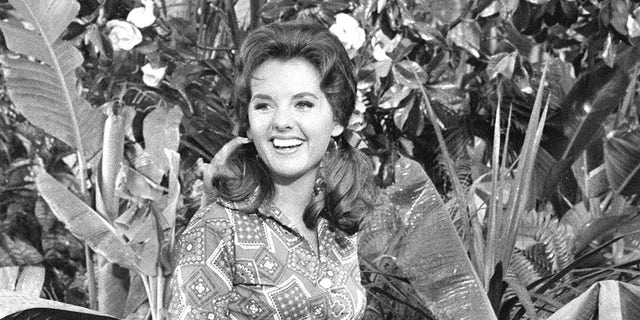 Dawn Wells starred as the lively Mary Ann Summers in the iconic 1960s sitcom 'Gilligan's Island.' (Photo by CBS via Getty Images)