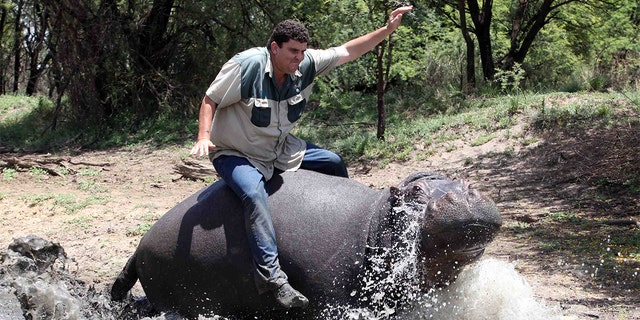 Marius Els with his pet hippo Humphrey at his farm in Free State, South Africa.