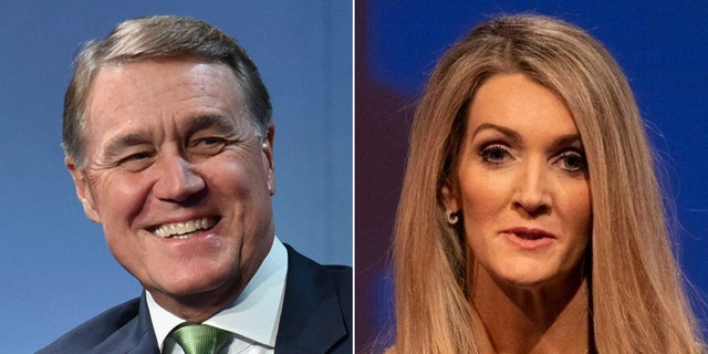 의미. David Perdue and Kelly Loeffler are the Republican Senate candidates in Georgia.