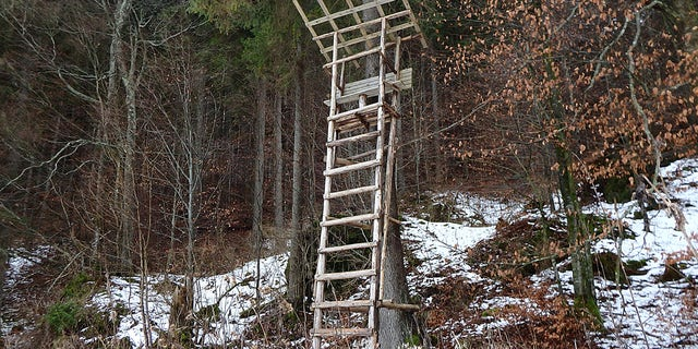 An Alabama man was found dead after apparently falling from a tree stand, like the one shown above.