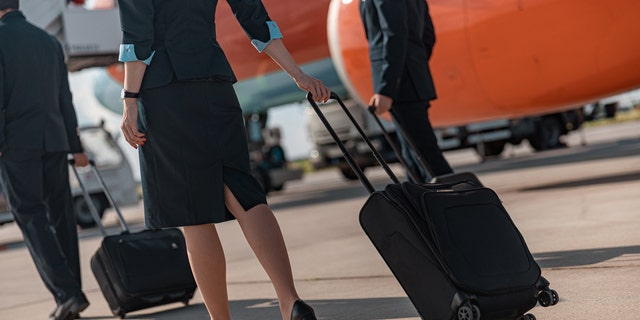 Both airlines told Fox News that they follow the guidelines set by the CDC and other health agencies. (iStock)